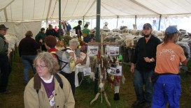 In the center of the tent, there's an area full of info about the various types of wool & other fiber, too.